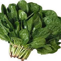 Холодостойкий урожайный шпинат сорт Лагос, семена Clause 250 г, Выращивание с ранней весны до поздней осени