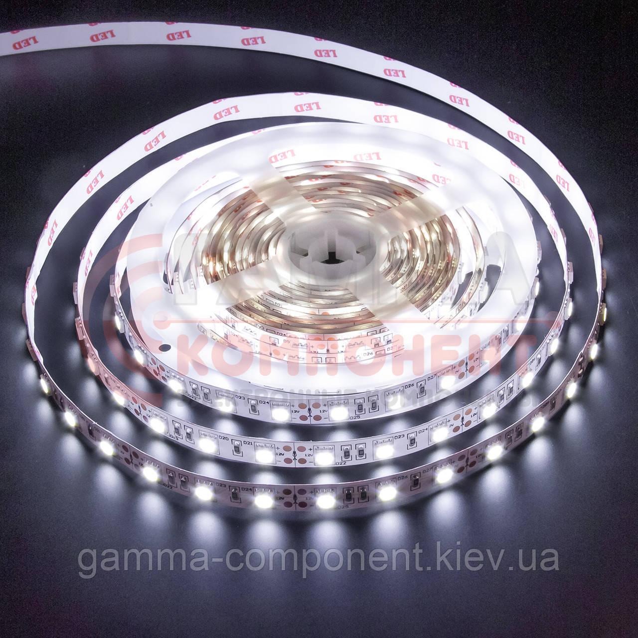 Светодиодная лента MOTOKO PREMIUM SMD 5050 (60 LED/м), белый, IP20, 12В - бобины от 5 метров