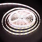 Светодиодная лента MOTOKO PREMIUM SMD 5050 (60 LED/м), белый, IP20, 12В - бобины от 5 метров, фото 2