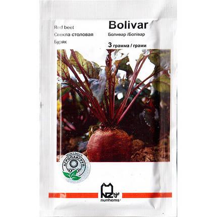 """Семена свеклы урожайной, столовой """"Боливар"""" (3 г) от Nunhems, Голландия, фото 2"""