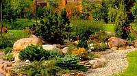 Ландшафтный дизайн Вашей усадьбы