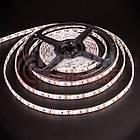 Світлодіодна стрічка SMD 2835 (120 LED/м), синій, IP20, 12В, бобіни від 5 метрів, фото 3