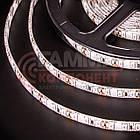Світлодіодна стрічка SMD 2835 (120 LED/м), синій, IP20, 12В, бобіни від 5 метрів, фото 4