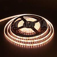 Светодиодная лента SMD 2835 (120 LED/м), теплый белый, IP20, 12В