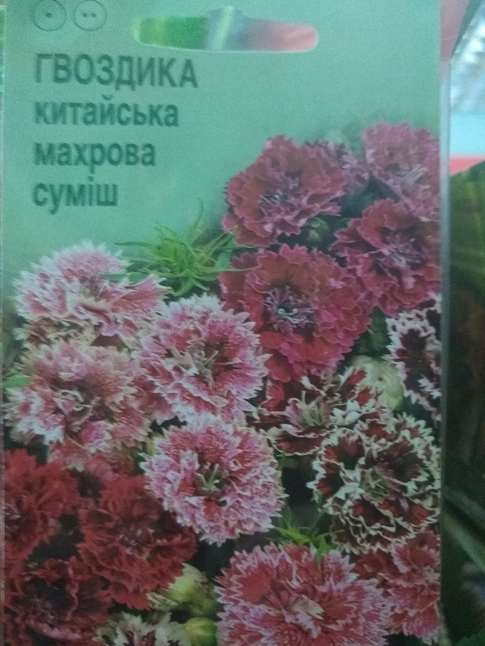 Гвоздика китайская махровая смесь 0.2 грамм, Dianthus chinensis