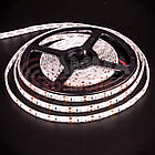 Светодиодная лента SMD 2835 (120 LED/м), желтый, IP65, 12В - бобины от 5 метров, фото 2