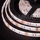 Светодиодная лента RGB SMD 5050 (30 LED/м), IP20, 12В - бобины от 5 метров, фото 3