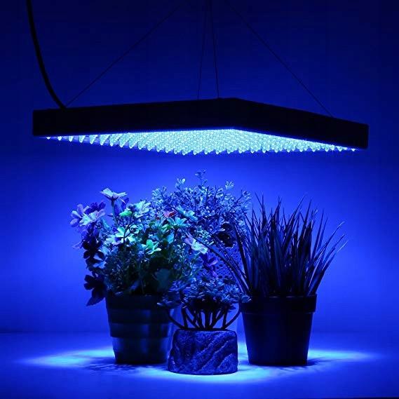 Лампа для выращивания растений 14W 225 LED, цена 650 грн. - Prom.ua  (ID#502045007)