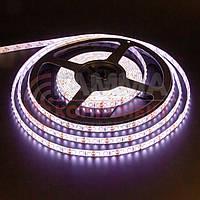 Светодиодная лента SMD 2835 (120 LED/м), белый, IP65, 12В, фото 1
