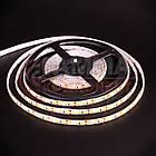Светодиодная лента SMD 2835 (120 LED/м), теплый белый, IP65, 12В - бобины от 5 метров, фото 2