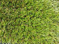 Вечнозеленый газон - это реальность!