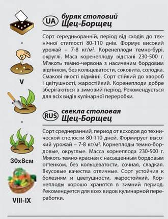 """Семена свеклы столовой """"Щец-Борщец"""" (3 г) от Agromaksi seeds, фото 2"""