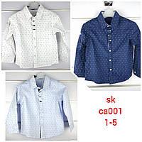 Рубашки для мальчиков оптом, Setty koop, 1-5 рр.