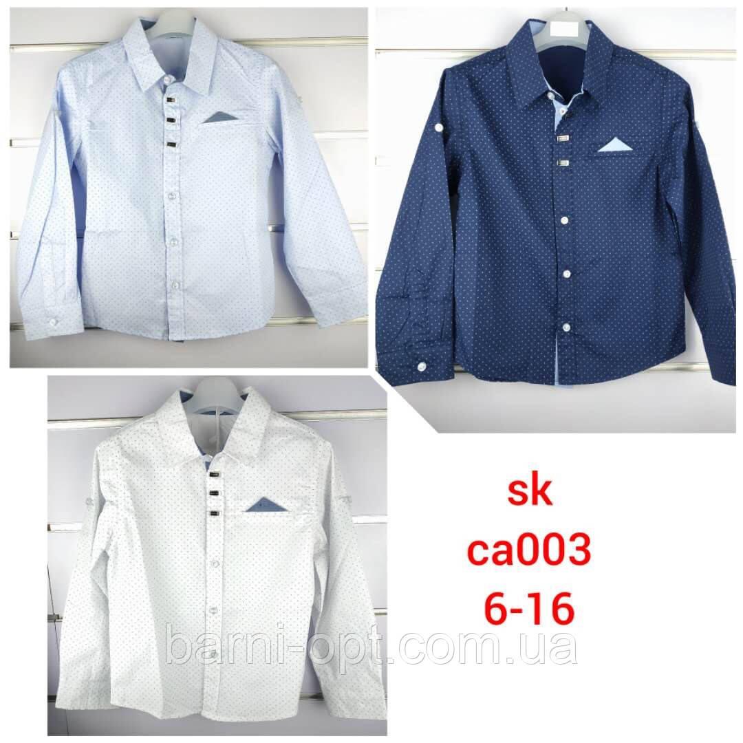 Рубашки для мальчиков оптом, Setty koop, 6-16 рр.