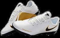 Сороконожки Nike Phantom VSN (р. 41-45) WH, фото 1
