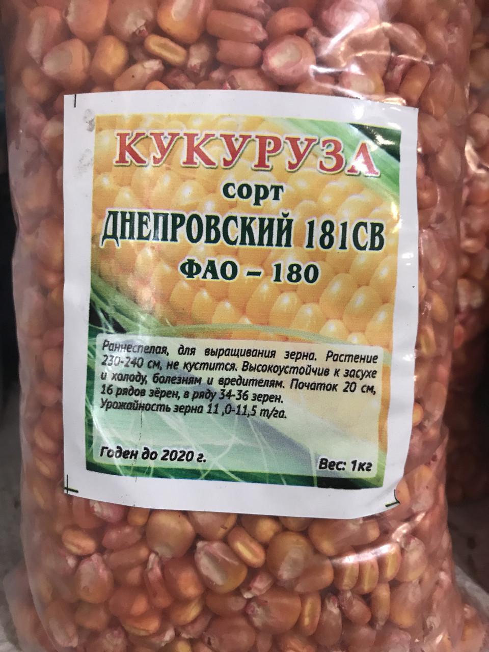 Кукуруза кормовая 1кг, сорт Днепровский 181СВ