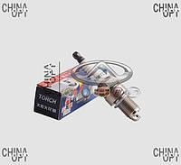 Свечи зажигания, комплект, 491Q, Great Wall Pegasus [2.2], 3707010-E01, TORCH