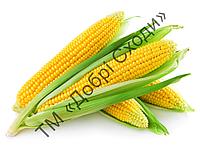 Кукурудза цукрова Оверленд F1 100шт (Syngenta) ТМ Добрі Сходи, фото 1