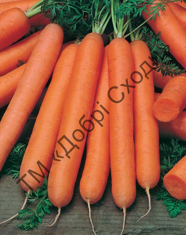Морква Смірна 2г (Semo) ТМ Добрі Сходи
