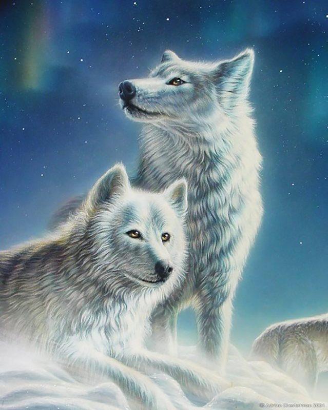 """Алмазная вышивка 50х40см - набор """"Красивая пара волков"""""""