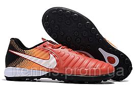 Сороконожки Nike TiempoX Finale TF (р. 40-45) C240