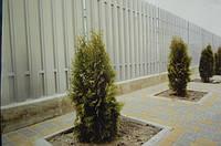 Забор штакетный секция Премиум 2000 х 1800