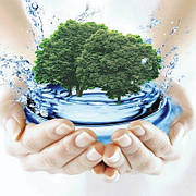 Природная очистка воды