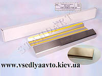 Защита порогов - накладки на пороги Fiat DOBLO I с 2000-2010 (Standart)