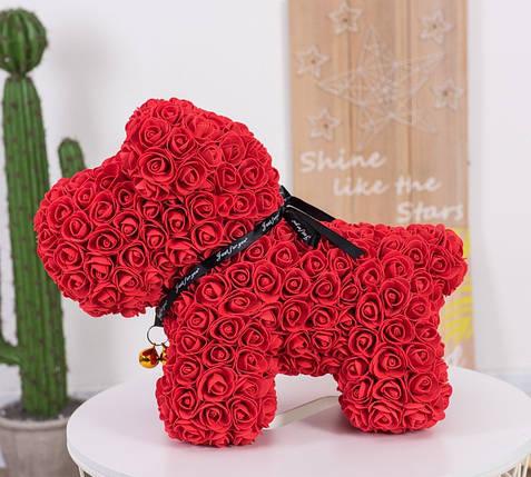 """Собачка из роз 3D, 38см """"Dog Flowers"""" (красная) + подароч. упаковка, фото 2"""