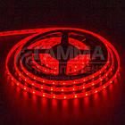 Светодиодная лента SMD 5050 (60 LED/м), красный, IP20, 12В - бобины от 5 метров, фото 2