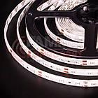 Светодиодная лента SMD 5050 (60 LED/м), красный, IP20, 12В - бобины от 5 метров, фото 3
