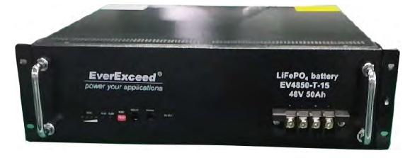 Литий железо фосфатный аккумулятор EverExceed EV-4850-T-15 (48В 50Ач)