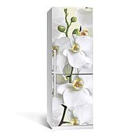 Наклейка на холодильник Орхидея (цветы, декор холодильника, виниловая пленка самоклеющаяся)