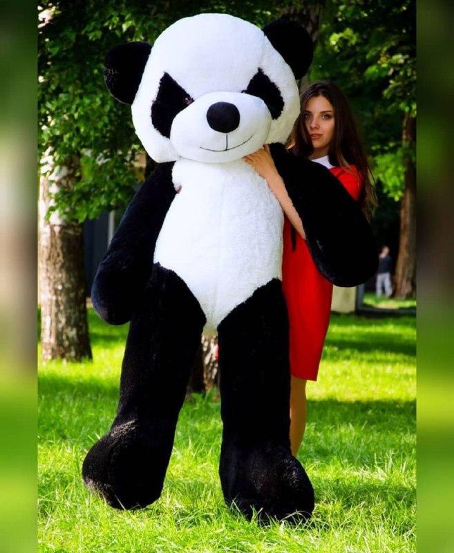 Плюшева панда 200 див. М'яка іграшка панда. Панда 200 см