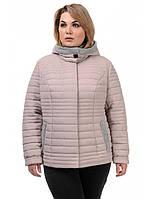 Женская демисезонная полуприталенная куртка, фото 1