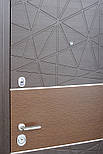 Двері вхідні STRAJ Туаль, фото 3