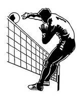 Волейбольный инвентарь