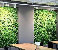 Вертикальное озеленение стен в Днепре, фитомодули