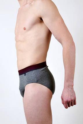 Чоловічі труси - сліп C+3 #202 XL сірий, фото 2