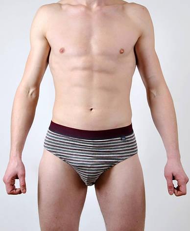 Мужские трусы - слип C+3 #202 M серый с вишневым, фото 2