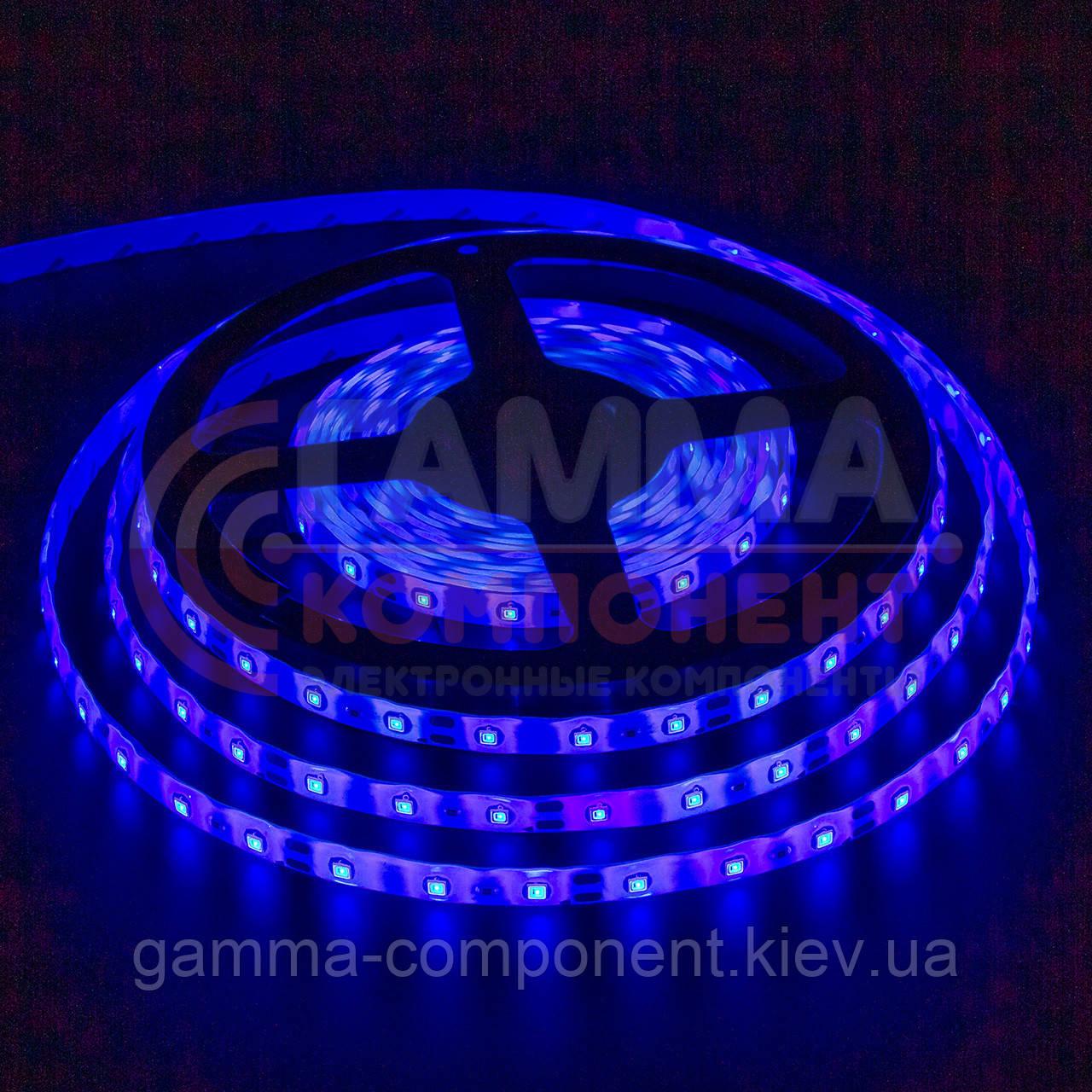 Светодиодная лента SMD 5050 (60 LED/м), синий, IP20, 12В