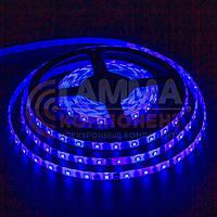 Светодиодная лента SMD 5050 (60 LED/м), синий, IP20, 12В, фото 1