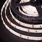 Светодиодная лента SMD 5050 (60 LED/м), белый, IP20, 12В- бобины от 5 метров, фото 3