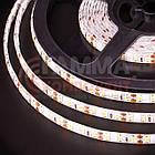 Светодиодная лента AVT PROFESSIONAL SMD 2835 (120 LED/м), белый, IP20, 12В - бобины от 5 метров, фото 3