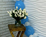 Набор для гирлянды из воздушных шаров (бело-голубая) насос в комплекте, фото 6