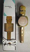 Колонка мікрофон YS-63 Gold, фото 2