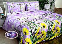 Набор постельного белья №с301 Евростандарт, фото 1
