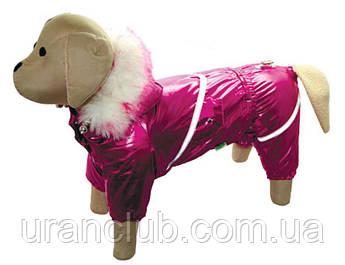 Комбинезон Блеск для собак на силиконе