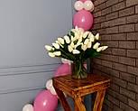 Гирлянда с воздушных шариков (бело-розовая) + насос, фото 6