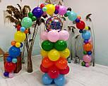 Гирлянда с воздушных шариков (радужная) /большие шарики/, фото 8